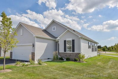 11917 Hollister Court, Huntley, IL 60142 - MLS#: 10164535