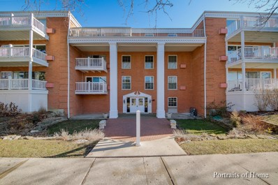 81 6th Avenue UNIT 104, La Grange, IL 60525 - MLS#: 10165001