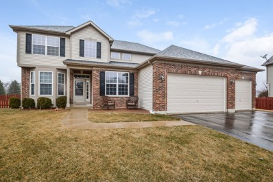 1607 Hoover Trail, Mchenry, IL 60051 - #: 10165005