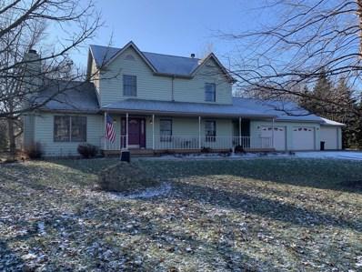 9811 Elizabeth Terrace, Rochelle, IL 61068 - #: 10165062