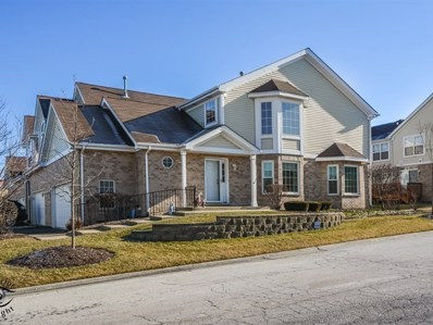 16139 Hackney Drive, Orland Park, IL 60467 - #: 10165289