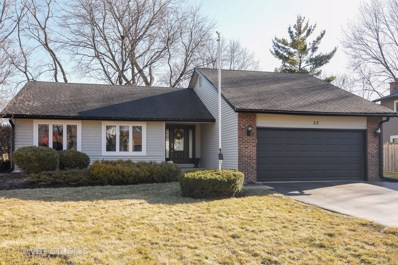33 E Country Club Court, Palatine, IL 60067 - #: 10166012