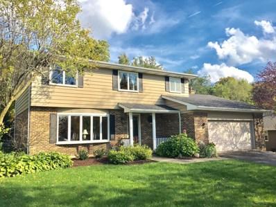993 Tara Drive, Woodstock, IL 60098 - #: 10166360