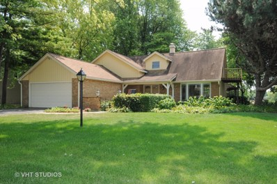 28W033  Country View Drive, Naperville, IL 60564 - #: 10166434