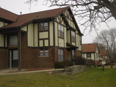 3413 Huntley Terrace UNIT 3413, Crete, IL 60417 - MLS#: 10166537
