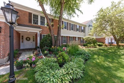 709 Newgate Lane UNIT C, Prospect Heights, IL 60070 - #: 10166541
