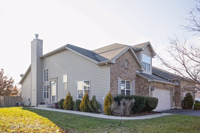 23009 Redwing Court, Plainfield, IL 60586 - #: 10167103