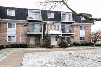 10330 Ridgeland Avenue UNIT 306, Chicago Ridge, IL 60415 - MLS#: 10167348