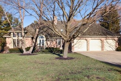 9 Lake View Road, Hawthorn Woods, IL 60047 - #: 10167380