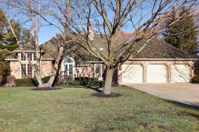 9 Lake View Road, Hawthorn Woods, IL 60047 - MLS#: 10167380