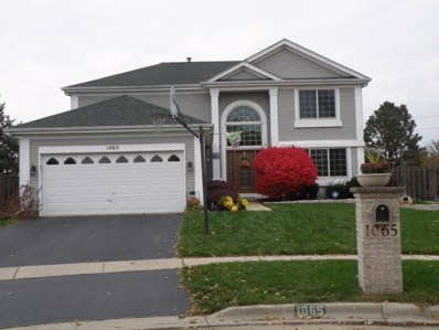 1065 Scarlet Oak Circle, Aurora, IL 60506 - MLS#: 10167392