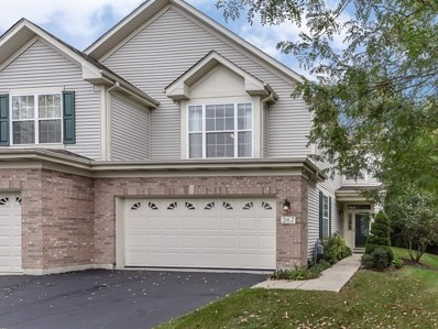 367 Emerald Lane, Algonquin, IL 60102 - #: 10167928