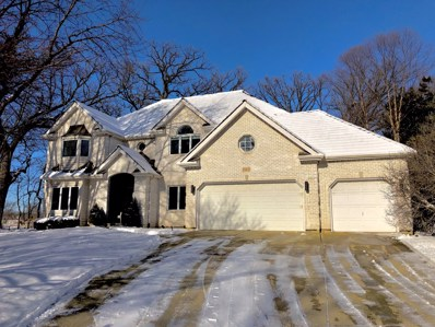 107 Trappers Court, Naperville, IL 60565 - #: 10167980
