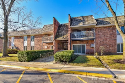 3915 Saratoga Avenue UNIT H-209, Downers Grove, IL 60515 - #: 10168341