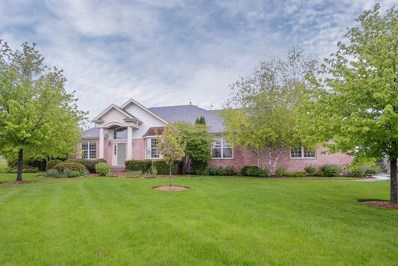 1 Charleston Court, Hawthorn Woods, IL 60047 - #: 10168491