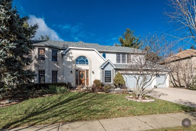 411 Knoch Knolls Road, Naperville, IL 60565 - #: 10168785