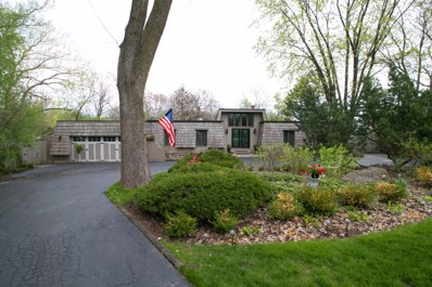 23W080  Hackberry, Glen Ellyn, IL 60137 - MLS#: 10168911