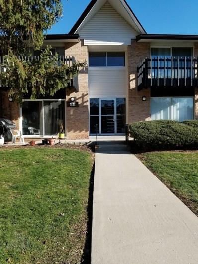 8B  Kingery Quarter UNIT 105, Willowbrook, IL 60527 - MLS#: 10169046