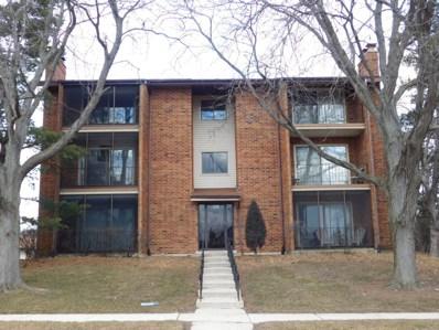 9910 Shady Lane UNIT 2SW, Orland Park, IL 60462 - #: 10169153