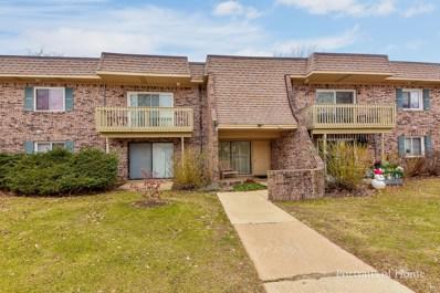 6S082  Park Meadow Drive UNIT 7E, Naperville, IL 60540 - #: 10169611