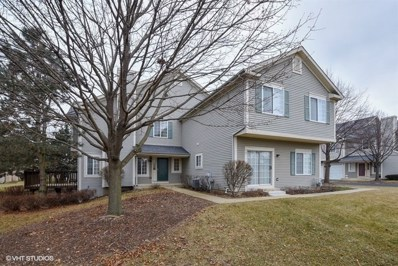 19 Windsor Circle UNIT B, South Elgin, IL 60177 - MLS#: 10169631