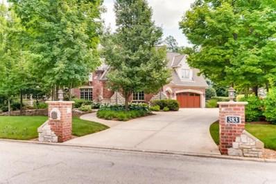 383 S Walnut Ridge Court, Frankfort, IL 60423 - MLS#: 10169667