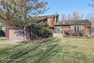 2944 Autumn Drive, Woodridge, IL 60517 - MLS#: 10169909