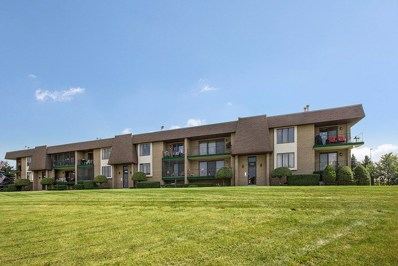 15724 Old Orchard Court UNIT 1E, Orland Park, IL 60462 - MLS#: 10170141