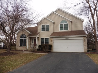 4035 Springlake Court, Lake In The Hills, IL 60156 - #: 10170268