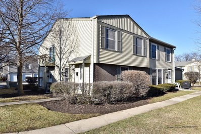1671 Williamsburg Court UNIT B, Wheaton, IL 60189 - #: 10170755