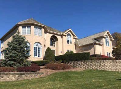 10518 Misty Hill Road, Orland Park, IL 60462 - #: 10171521