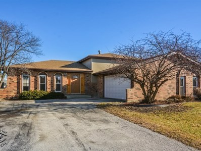 20043 Lake Lynwood Drive, Lynwood, IL 60411 - MLS#: 10171807