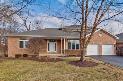 974 Sanctuary Court, Vernon Hills, IL 60061 - #: 10172130