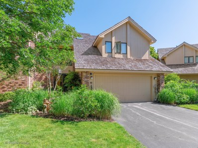 45 Oak Creek Court, Burr Ridge, IL 60527 - #: 10172339