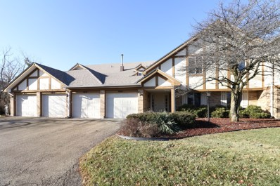 9039 W Somerset Court UNIT 7, Orland Park, IL 60462 - #: 10172355