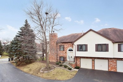 11246 Cameron Parkway, Orland Park, IL 60467 - #: 10173055