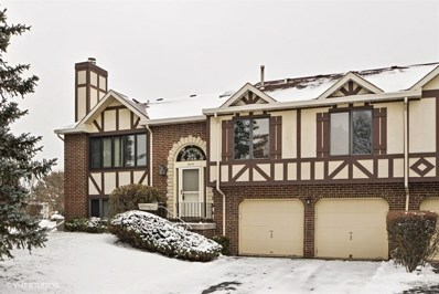 9255 Drummond Drive UNIT 9255, Tinley Park, IL 60487 - MLS#: 10248829