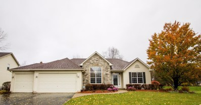 1627 Tyler Trail, Mchenry, IL 60051 - #: 10249030