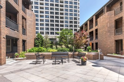 1000 N State Street UNIT 5, Chicago, IL 60610 - #: 10249114