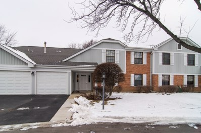 317 Woodbury Court UNIT D2, Schaumburg, IL 60193 - MLS#: 10249810