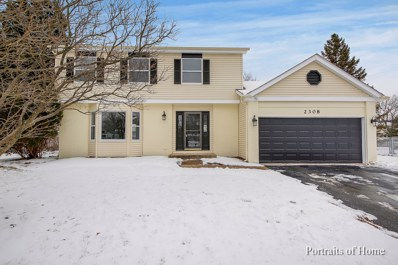 2308 Providence Court, Naperville, IL 60565 - #: 10249839