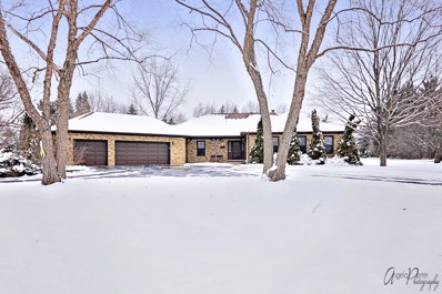 145 Glen Road, Hawthorn Woods, IL 60047 - MLS#: 10249945
