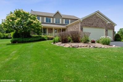 17111 Fieldstone Drive, Marengo, IL 60152 - #: 10250126