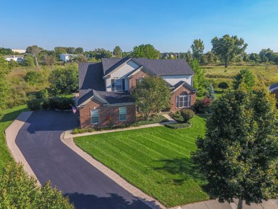 16 Rock River Court, Algonquin, IL 60102 - #: 10250138