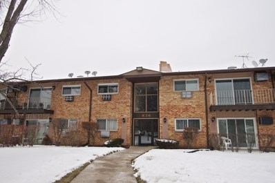 836 E Old Willow Road UNIT 11216, Prospect Heights, IL 60070 - #: 10250398