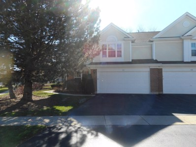 101 Dorshire Court UNIT 101, Schaumburg, IL 60193 - #: 10250443