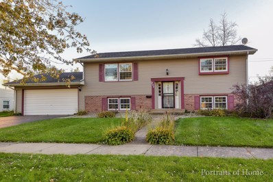 292 Hubbard Lane, Crete, IL 60417 - MLS#: 10250496