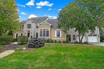 7981 Greenbriar Court, Burr Ridge, IL 60527 - MLS#: 10251018