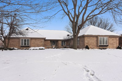 239 North Trail, Hawthorn Woods, IL 60047 - #: 10251727
