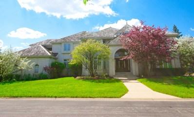 9284 Cascade Circle N, Burr Ridge, IL 60527 - #: 10251931